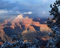 Grand Canyon Vista stockfotos