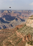 Grand Canyon Vista Royalty Free Stock Images