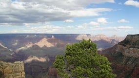 Grand Canyon von der Kante Stockfotografie