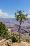 Grand Canyon von Hopi Point stockfotos