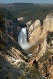 Grand Canyon von Yellowstone Lizenzfreie Stockfotografie
