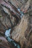 Grand Canyon von Yellowstone Stockfotos