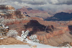 Grand Canyon Winter Landscape Stock Photography