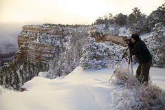 Grand Canyon Winter Photographer Stock Image