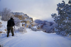 Grand Canyon Winter Photography Royalty Free Stock Images