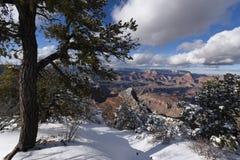 Grand Canyon winter scene Stock Image