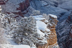 Grand Canyon Winter Scenic Landscape Stock Image