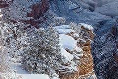 Grand Canyon Winter Scenic Landscape Stock Image