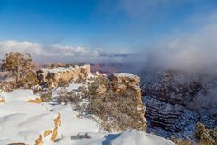 Grand Canyon Winter Snow Royalty Free Stock Image