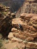 grand canyon wspinaczka Fotografia Stock