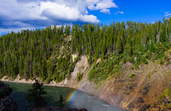 Grand canyon of yellow stone national park Stock Photography