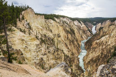 The grand canyon of yellowstone Stock Image