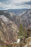 The grand canyon of yellowstone Stock Images