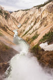 The grand canyon of yellowstone Royalty Free Stock Images