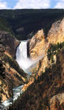 Grand Canyon of the Yellowstone with Lower Falls Royalty Free Stock Photography