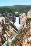 Grand Canyon of the Yellowstone and Lower Falls, Wyoming, USA Royalty Free Stock Photography