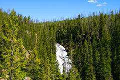 Grand Canyon of the Yellowstone National Park Royalty Free Stock Photography