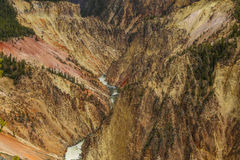 Grand canyon in yellowstone national park Royalty Free Stock Image