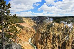The Grand Canyon of the Yellowstone National Park, USA royalty free stock photos