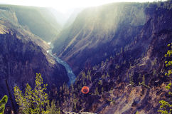 Grand Canyon of Yellowstone. Summer 2013 royalty free stock image