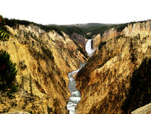 Grand Canyon of the Yellowstone (USA). The Grand Canyon of the Yellowstone is the first large canyon on the Yellowstone River downstream from Yellowstone Falls Stock Photos