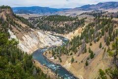 Grand canyon of Yellowstone Royalty Free Stock Photo