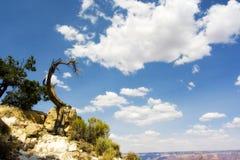 Grand Canyonansicht Lizenzfreie Stockfotografie