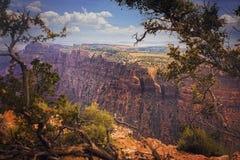 Grand Canyonnationalpark Royaltyfria Foton
