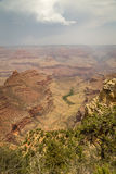 Grand Canyonnationalpark Royaltyfria Foton
