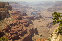 Grand Canyonnationalpark Royaltyfri Bild