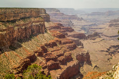 Grand Canyonnationalpark Arkivbilder
