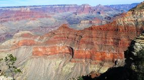 Grand- CanyonNationalpark, Arizona Lizenzfreie Stockfotos