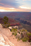 Grand- CanyonNationalpark, USA Stockbilder