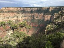 The Grand CanyonSouth Rim from Mather Point 5 Royalty Free Stock Image