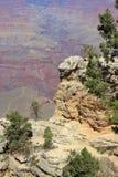Grand Canyontourist - 2 Lizenzfreies Stockfoto