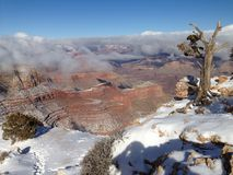 Grand- Canyonwinter Lizenzfreies Stockbild