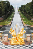 Grand Cascade fountain in Peterhof Royalty Free Stock Photos
