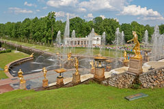 Grand Cascade fountains of Peterhof Stock Photography