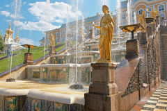 Grand Cascade fountains of Peterhof Stock Image