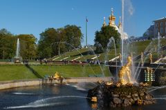Grand Cascade in Peterhof, St. Petersburg, Russia. Peterhof, St. Petersburg, Russia - June 4, 2017: Tourists walking around the Sea canal and the Grand Cascade Stock Photos