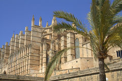 Grand cathedral in Mallorca Royalty Free Stock Photo