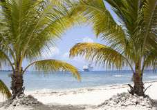 Grand Cayman Beach Royalty Free Stock Image