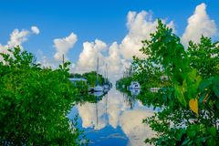 Grand Cayman Canal royalty free stock photography