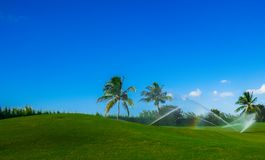Grand Cayman-Golf Course 7. Golf course on Grand Cayman being watered, Cayman Islands stock photos