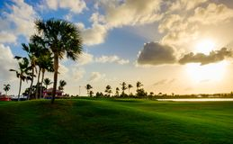 Grand Cayman-Golf Course 8 royalty free stock photography
