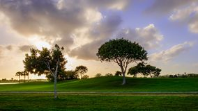 Grand Cayman-Golf Course 9 royalty free stock image