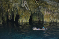 Free Grand Cenote In Yucatan, Mexico. Stock Image - 67723611