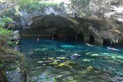 Grand Cenote In Yucatan Peninsula, Mexico. Royalty Free Stock Photo