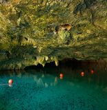 Grand Cenote one of the most famous cenotes in Mexico stock photos