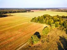 Grand champ après vue aérienne de récolte Autumn Woods photos libres de droits